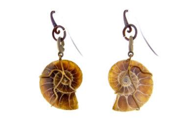 merak - ammonite earrings pic1