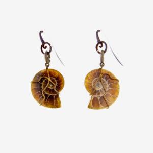 merak - ammonite earrings pic2