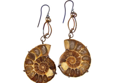 mizar - ammonite fossils earrings pic1